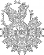 printable coloring page - eagle